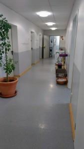 (人間の)病院の写真…と言ってもたぶん信じてくれるのでは?